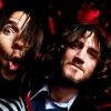 Red Hot Chili Peppers   Vocalista é internado e banda cancela shows nos Estados Unidos