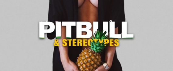 Pitbull Jungle